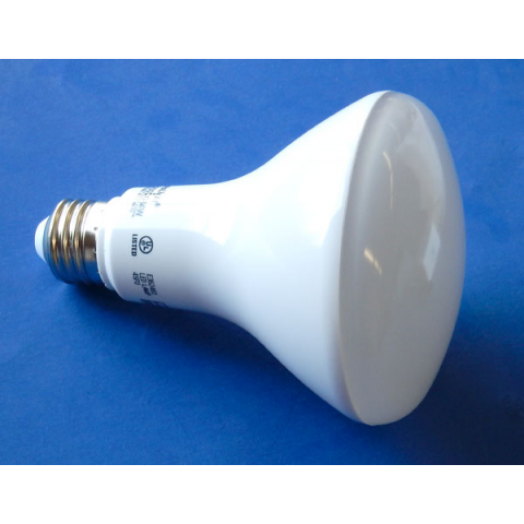 120 VAC DIMMABLE LED FLOOD LAMP