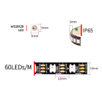 INDEPENDENTLY ADDRESSABLE LED STRIP & CONTROLLER | All